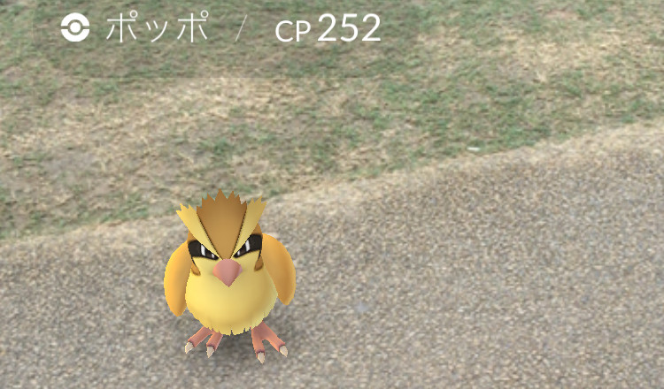 pokemongo-playd4
